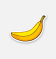 sticker not peeled banana vector image vector image