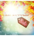 Autumn sales banner EPS 10 vector image