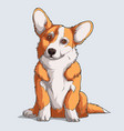 cute welsh corgi fluffy pembroke dog sitting vector image vector image