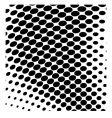 halftone dots vector image vector image