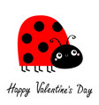 happy valentines day lady bug ladybird insect vector image vector image