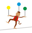 isolated circus monkey vector image