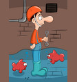 plumber solves the problem with fish vector image vector image