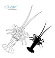 silhouette spiny lobster linear silhouette spiny vector image vector image