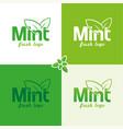 mint logo vector image