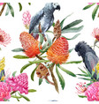 watercolor tropical australian pattern vector image