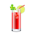 Bloody mary cocktail isolated on white vector image