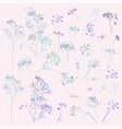 collection rustic elegant florals plants vector image