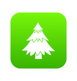coniferous tree icon digital green vector image