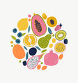 food set for your design vector image vector image