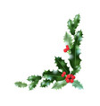 holly leaves corner vector image