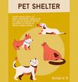 poster pet shelter concept adoption vector image