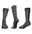 realistic football socks black template vector image