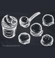 set hand drawn chalk ice cream bucket vector image vector image