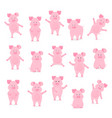 a set of cute pig characters in different poses vector image vector image