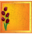 abstract grunge yellow background with red tulips vector image