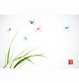 dragonflies flying over the green grass vector image vector image