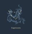 zodiac constellation capricorn and its symbol vector image vector image
