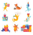collection cute dogs in party hats with gift vector image vector image
