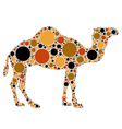 dotted camel vector image vector image