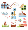 set cat accessories cats scratching post house vector image vector image
