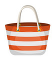 summer beach bag vector image vector image