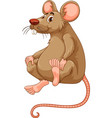 Little mouse with brown fur vector image