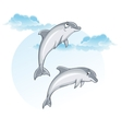 Cartoon image of dolphins vector image