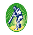 cricket batsman background vector image vector image