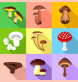different mushroom icons set flat style vector image vector image