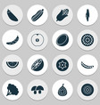 food icons set with acorn eggplant zucchini and vector image vector image