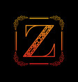 letter z with ornament vector image