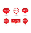 new label set sticker vector image vector image