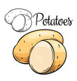 potatoes drawing icon vector image vector image