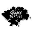 splash stains texture banner black and white vector image vector image