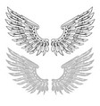 straightened wings in linear and stamp versions vector image vector image