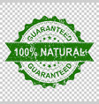 100 natural scratch grunge rubber stamp on vector image