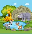 animals around a pond vector image