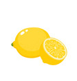 bright set of colorful juicy lemons vector image