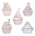 cupcakes with berries and cookies vector image