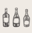 hand drawn wine bottles in sketch style vector image vector image