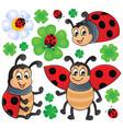 image with ladybug theme 1 vector image