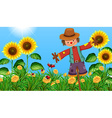 Scarecrow in the sunflower field vector image vector image
