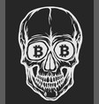 skull with bitcoin symbols vector image vector image