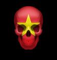 vietnamese flag skull vector image vector image