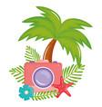 camera photographic summer accessory icon vector image