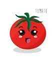 cartoon tomato food design isolated vector image