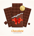 chocolate package bar blank for advertizing vector image vector image