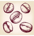 coffee beans set hand drawn llustration vector image vector image