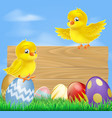 easter chicks and wooden sign vector image vector image